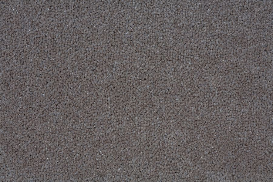 Nylon/Polyester/Fabric Carpets