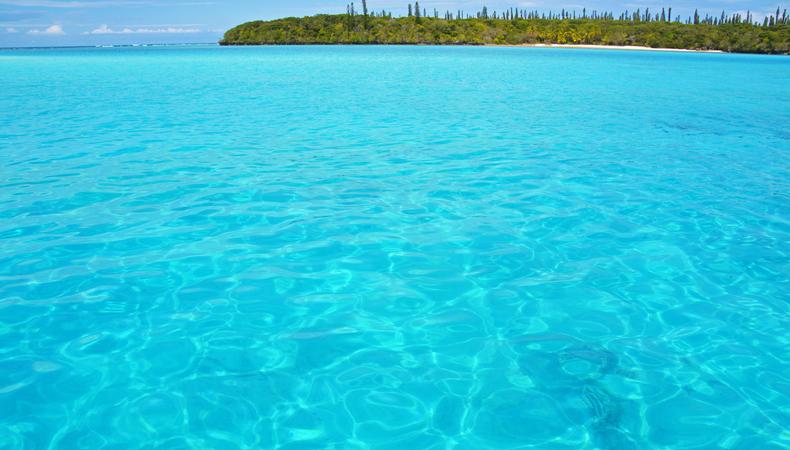 「海の宝石箱」ニューカレドニア・イルデパン島へ