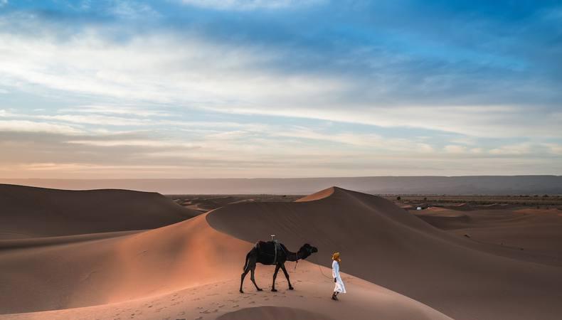 エキゾチックなドバイの砂漠でラクダに乗りたい