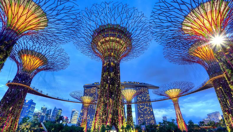 シンガポール「ガーデンズ・バイ・ザ・ベイ」のダイナミックなライトショー!