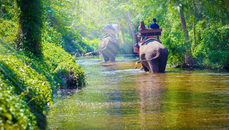 タイでゾウさんに乗りたい