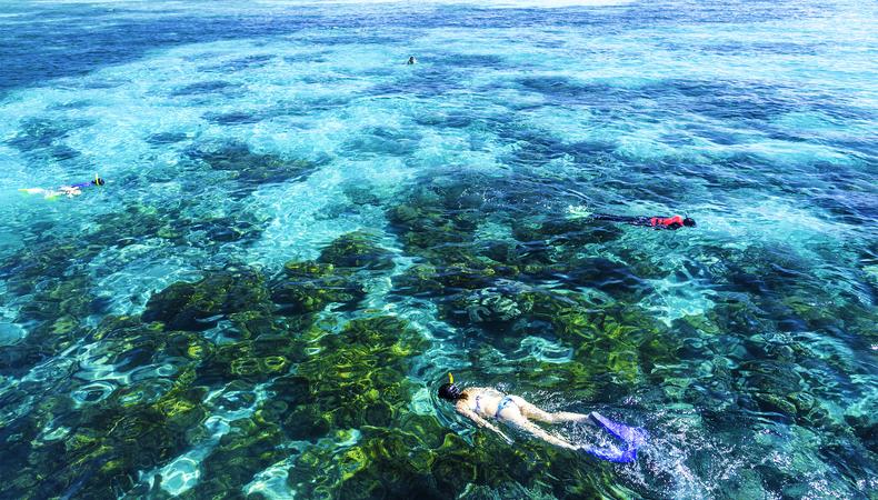 オーストラリアのグリーン島でマリンレジャーを満喫