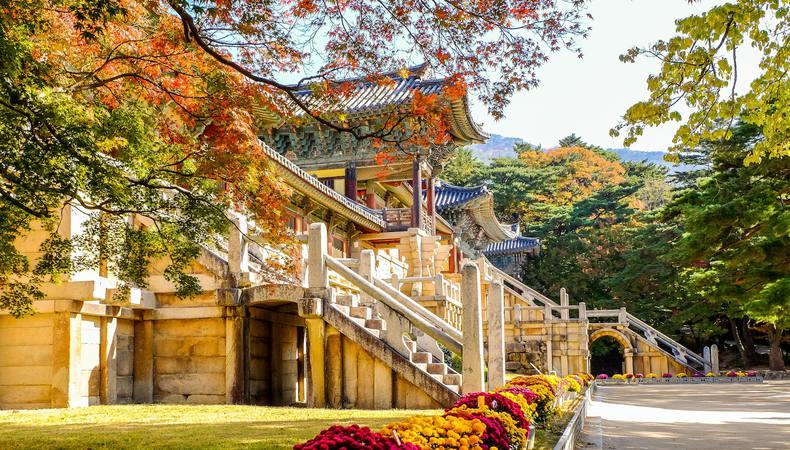 韓国 慶州で世界遺産巡りがしたい
