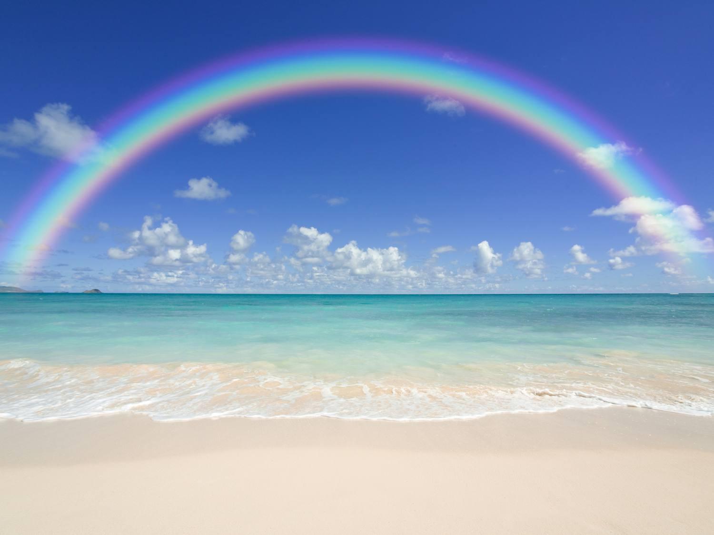 意味 rainbow rain no no