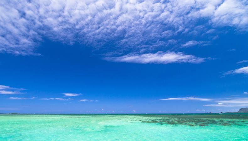 幻想的な天使の海へ行きたい@ハワイ