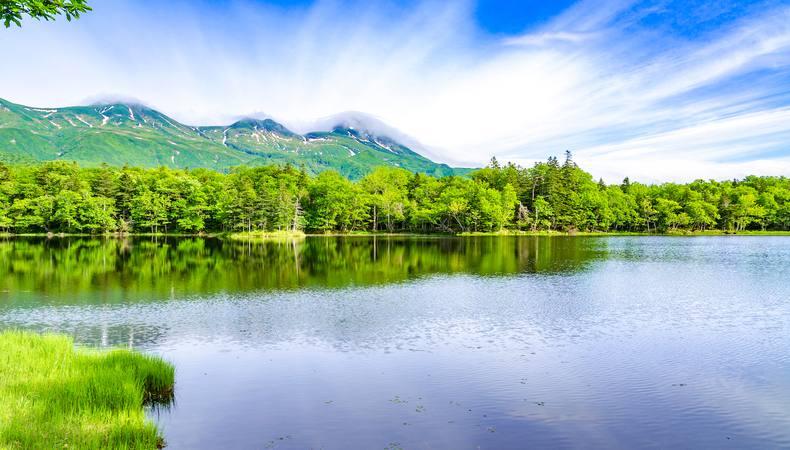 北海道の世界自然遺産!知床五湖をトレッキング