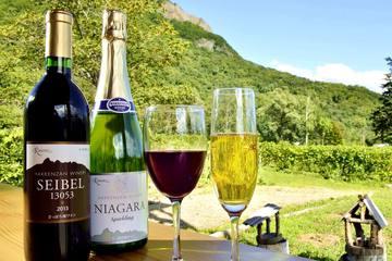 北海道ワインの基礎徹底ガイド|主な産地や有名ブドウ品種を紹介!
