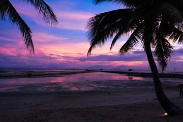 マクタン島の観光ガイド|ホテル・レストラン・アクティビティまとめ