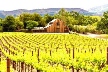 カリフォルニアワインの歴史と人気銘柄|銘醸地ナパ&ソノマも紹介!