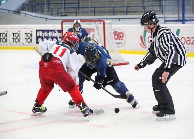 https://pixabay.com/sv/photos/hockey-slavia-skater-hockey-spelare-2744907/