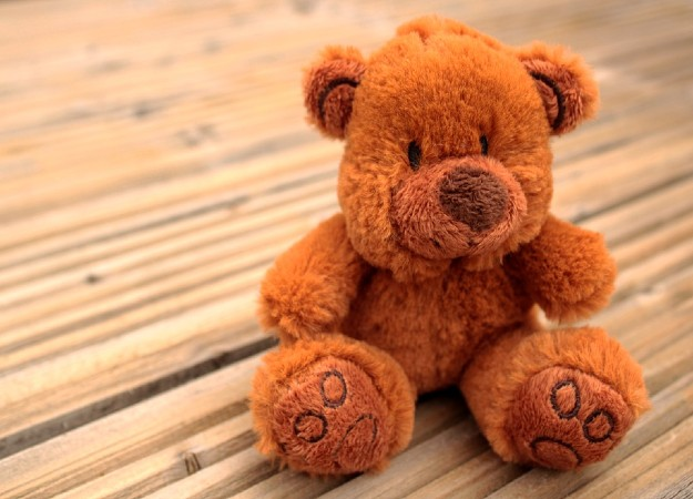 https://pixabay.com/sv/photos/nalle-teddy-honey-bear-bj%C3%B6rnar-4231582/