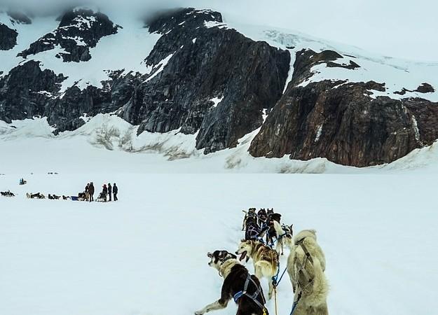 https://pixabay.com/photos/sled-dogs-alaska-dog-sled-sled-dog-363771/