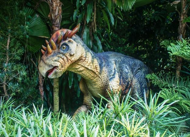 https://pixabay.com/sv/photos/singapore-zoo-2164308/