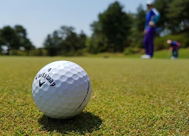 https://pixabay.com/sv/photos/golf-golfboll-golfare-golf-club-3216250/