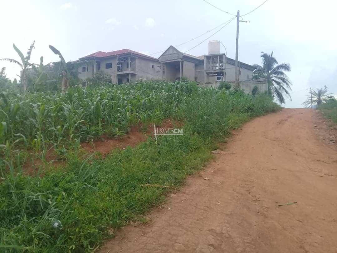 Land for sale at Yaoundé, Ekoumdoum, 5000 - 50000 m2 - 5 000 000 FCFA