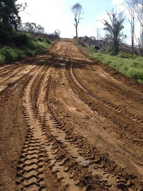Terrain à vendre - Dibamba, Kendeck, Nom loin de là scdp - 500 m2 - 1 500 000 FCFA