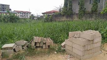 Land for sale at Douala, Logpom, bassong - 350 m2 - 21 000 000 FCFA