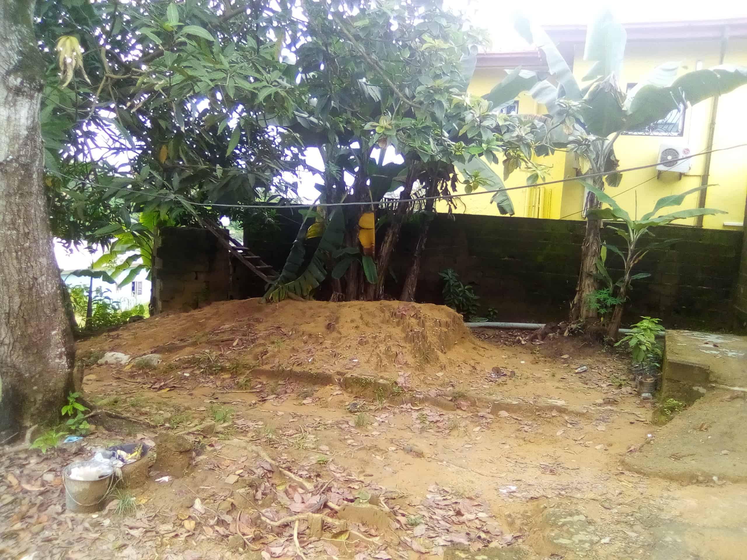 House (Villa) for sale - Douala, Logpom, Bangos - 1 living room(s), 3 bedroom(s), 2 bathroom(s) - 13 000 000 FCFA / month