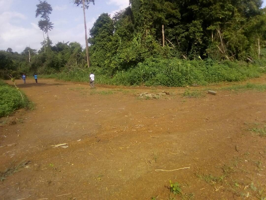 Land for sale at Douala, Bassa, dibamba - 2000 m2 - 6 000 000 FCFA