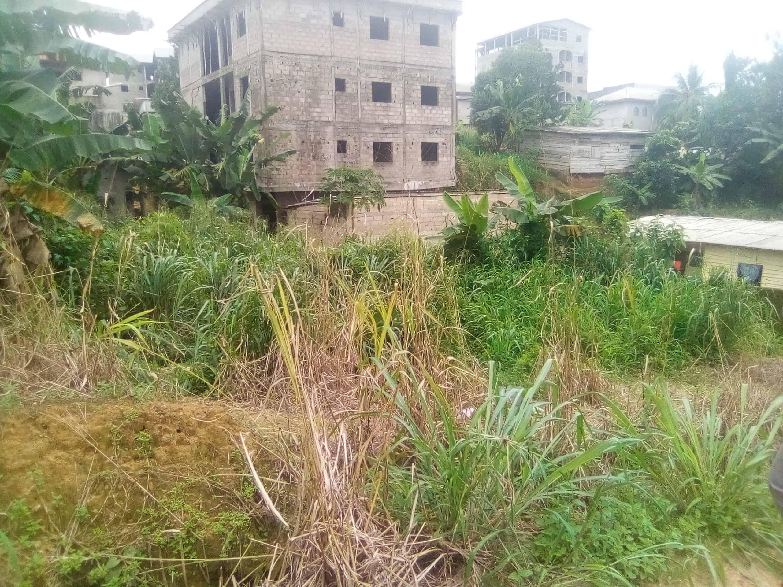Land for sale at Douala, Logpom, Avant l'hôpital des soeurs - 180 m2 - 7 000 000 FCFA