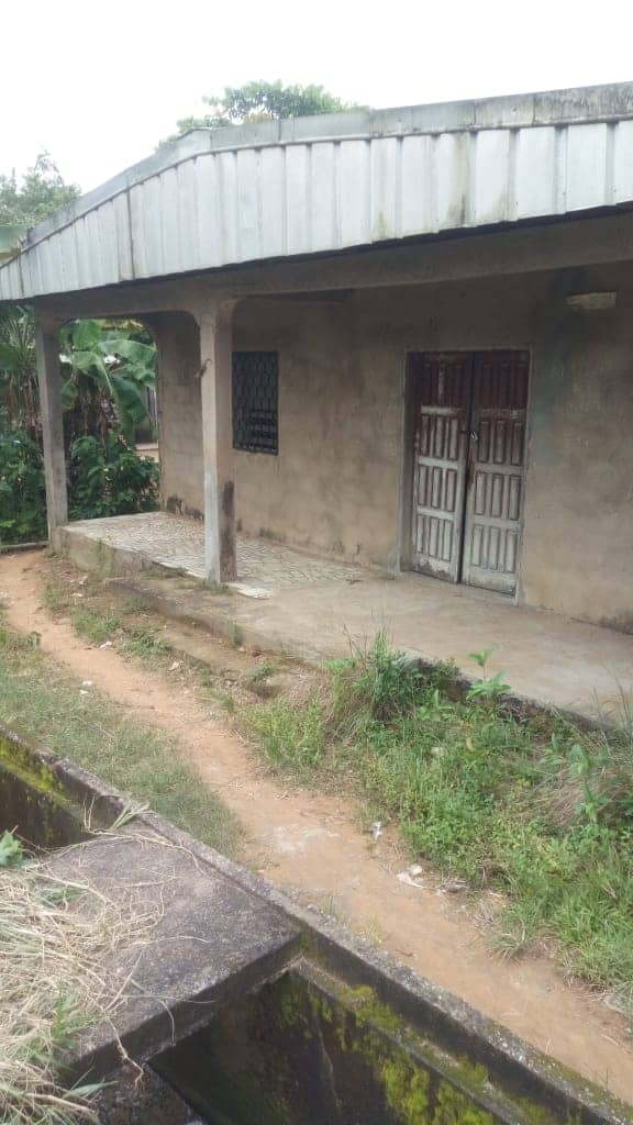 House (Villa) for sale - Douala, PK 11, Lycée ndoghem - 1 living room(s), 3 bedroom(s), 2 bathroom(s) - 12 000 000 FCFA / month