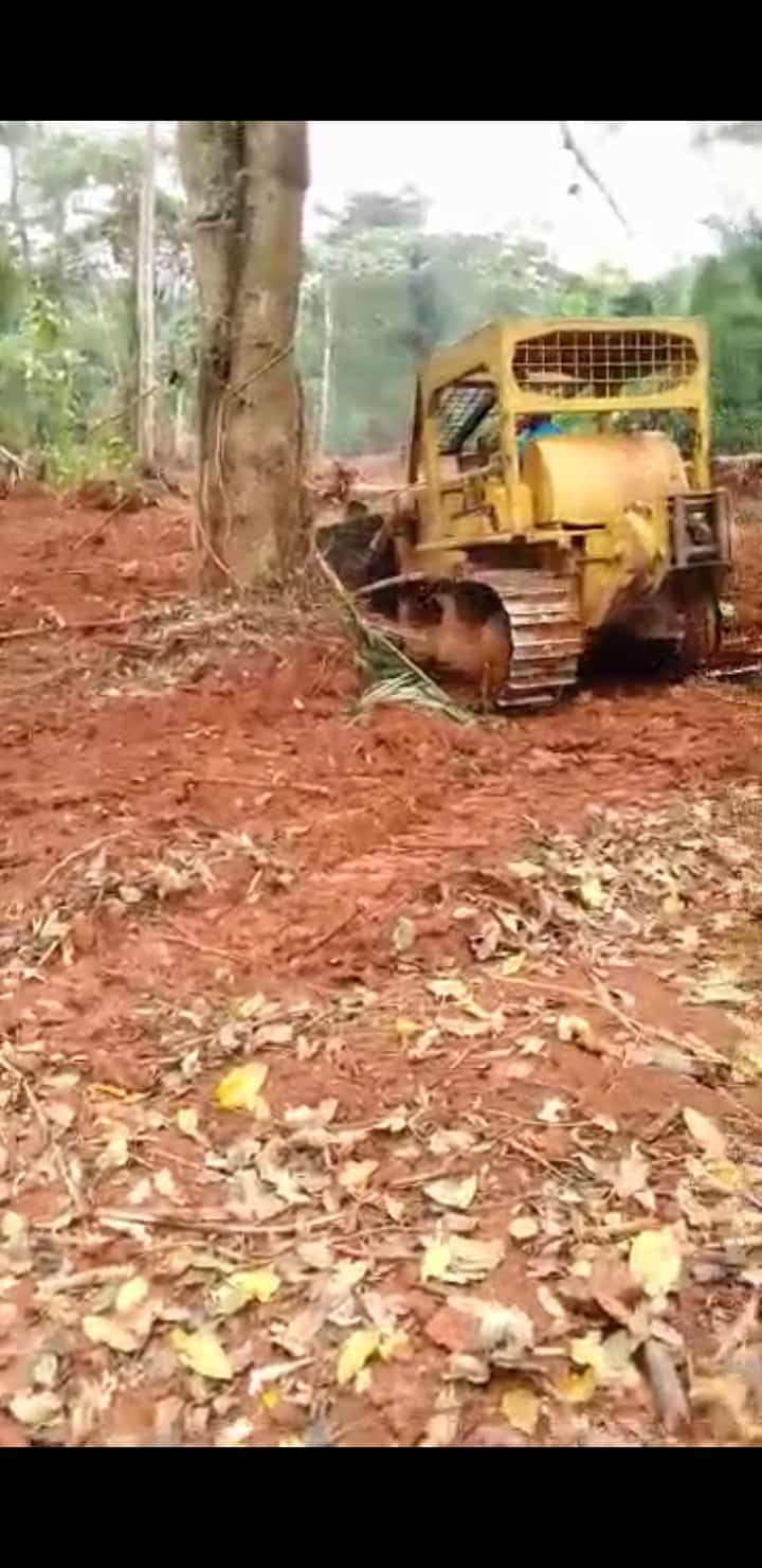 Land for sale at Yaoundé, Nkolfoulou, Ntuissong V - 50000 m2 - 250 000 000 FCFA