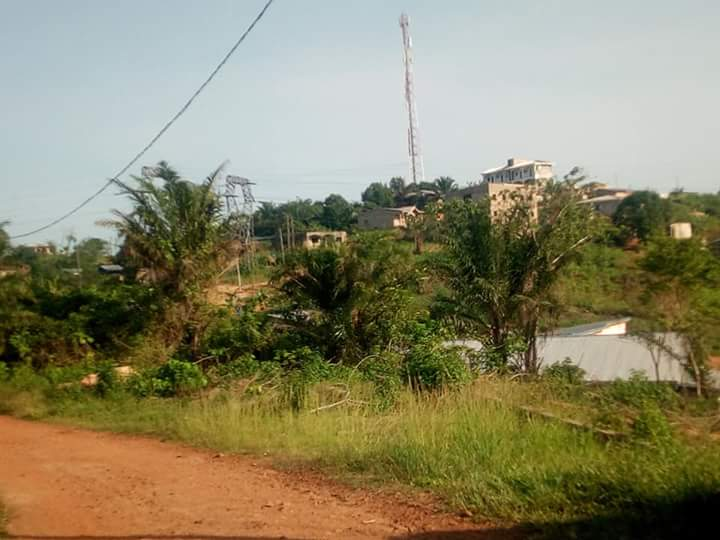 Land for sale at Douala, PK 17, DERRIERE L UNIVERSITE DE PK 17 - 1000 m2 - 15 000 000 FCFA