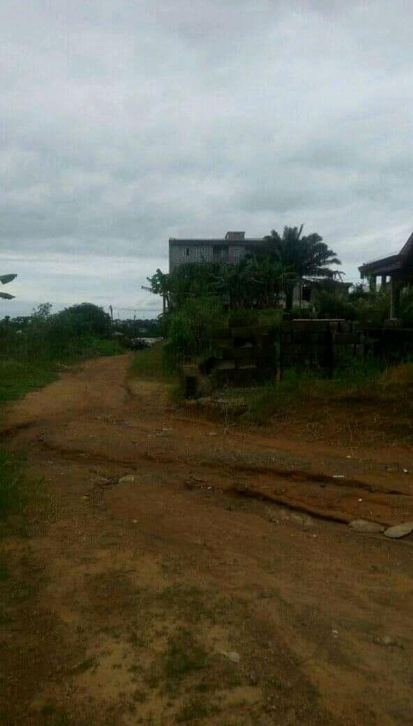 Land for sale at Douala, Japoma, Ver petit château - 670 m2 - 16 750 000 FCFA