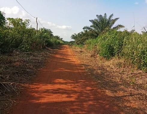 Land for sale at Yaoundé, Nkolfoulou, NKOABANG - ASSOK - 1000 m2 - 7 000 000 FCFA