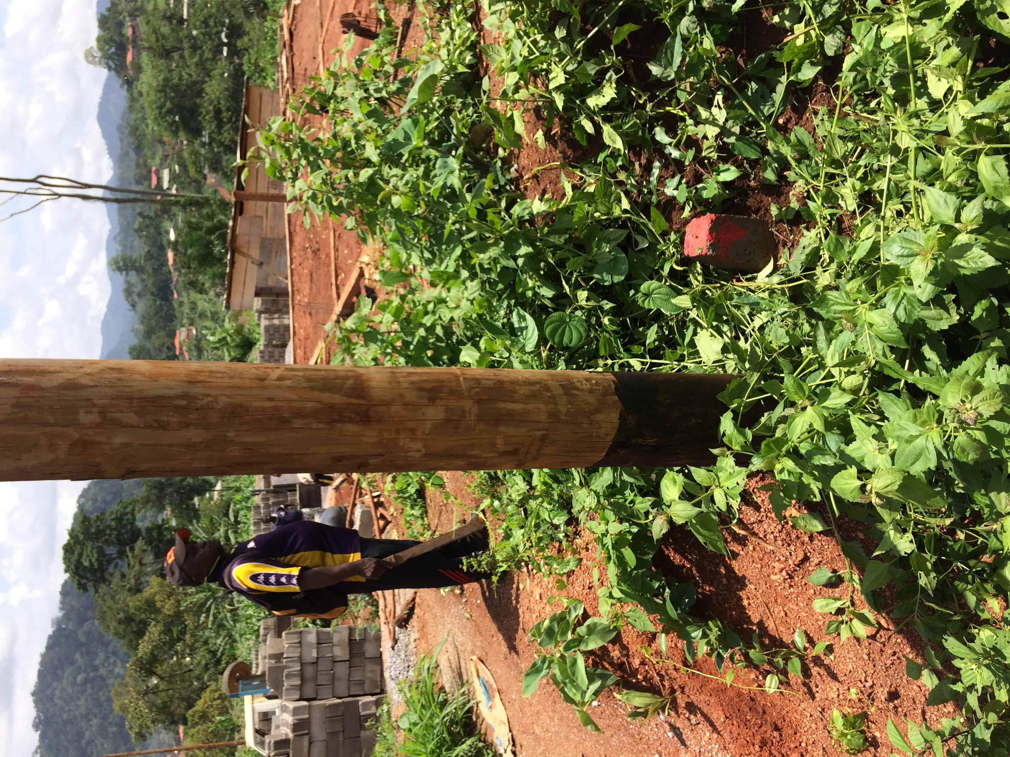 Land for sale at Yaoundé, Nkolafeme, Béatitude  - 906 m2 - 15 402 000 FCFA