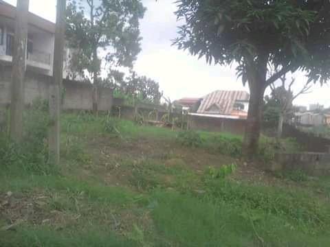 Land for sale at Douala, Bangue, Collège soflane - 600 m2 - 18 000 000 FCFA