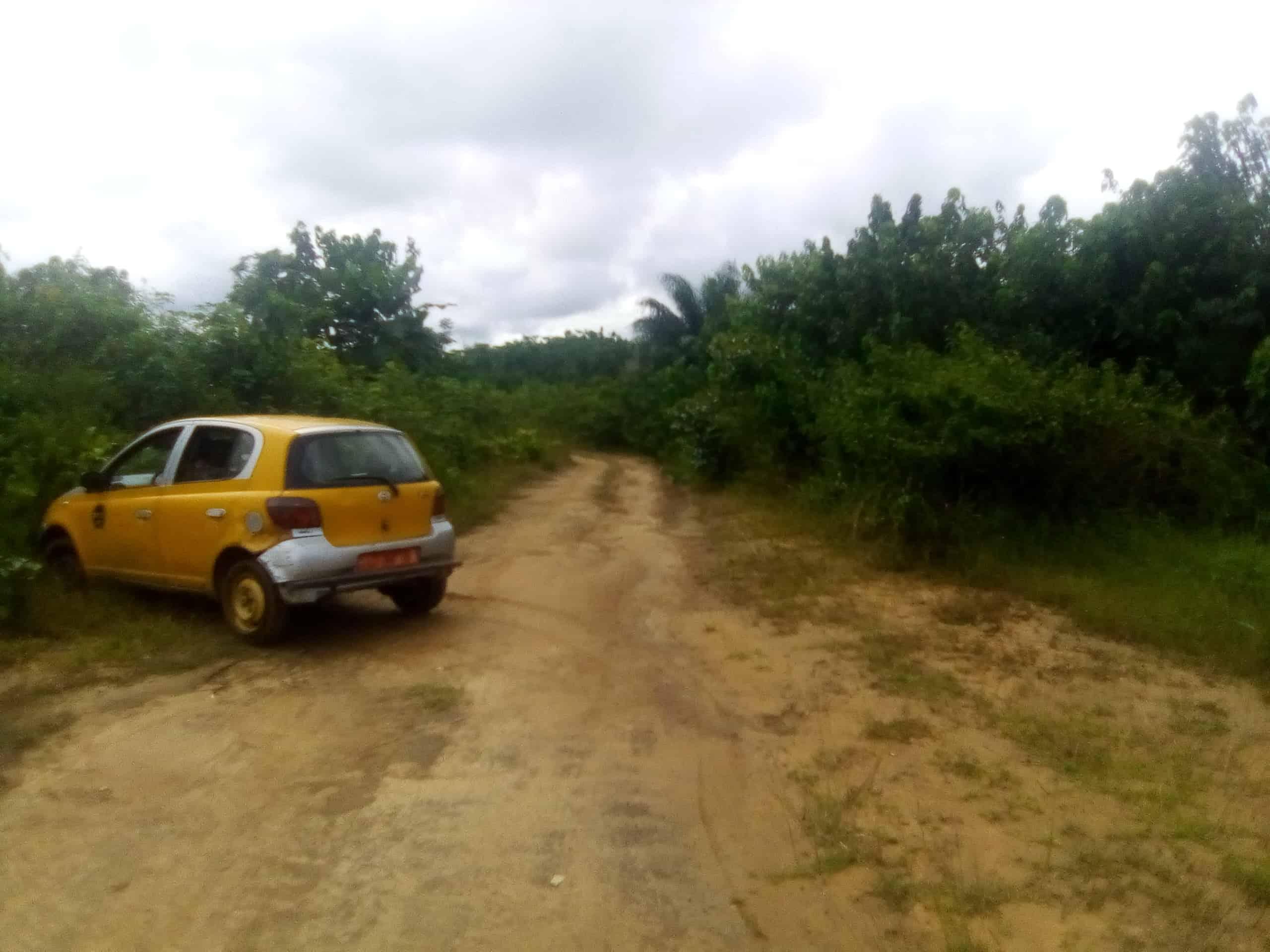 Land for sale at Douala, Lendi, Après chefferie - 1000 m2 - 7 000 000 FCFA
