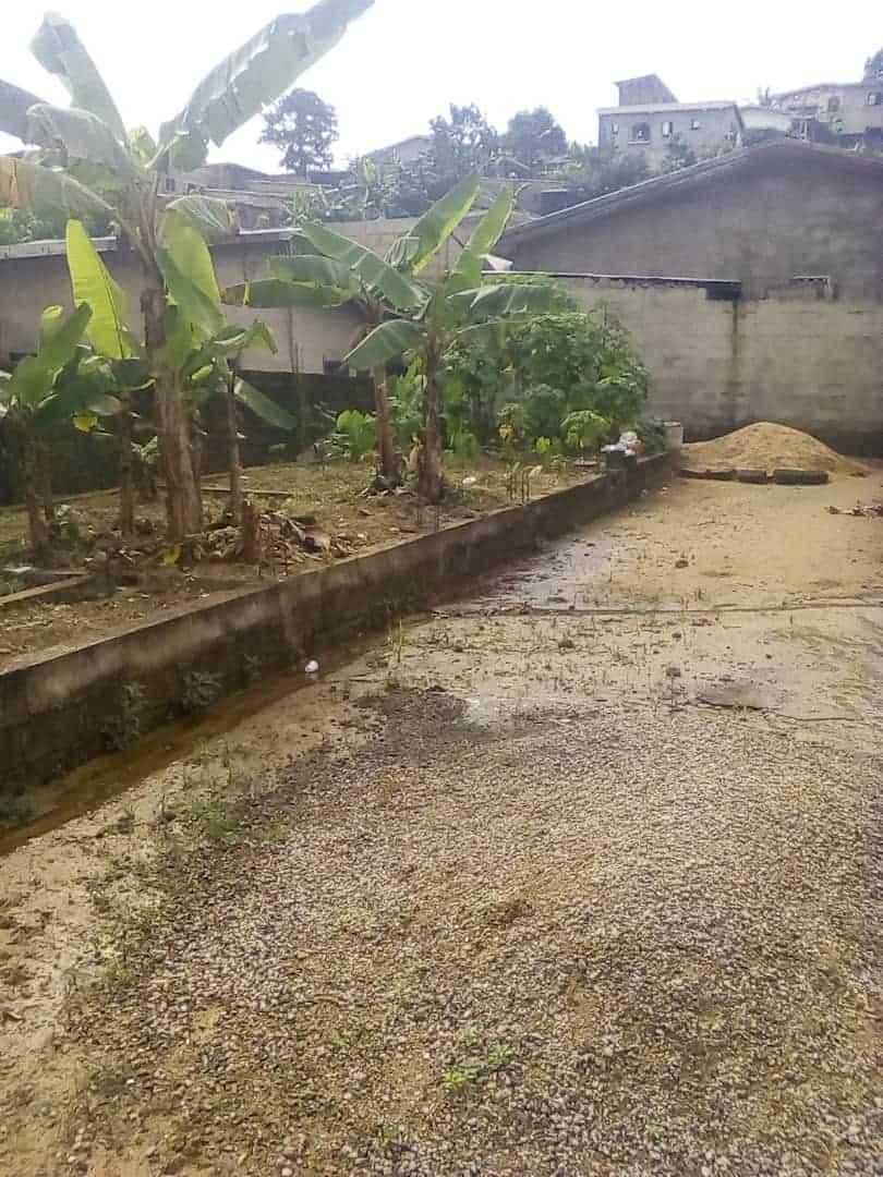 Land for sale at Douala, Bangue, Poste de police - 175 m2 - 5 000 000 FCFA