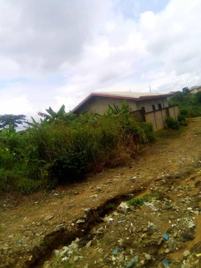 Terrain à vendre - Douala, Logbessou II, Rue des pavés - 300 m2 - 6 000 000 FCFA