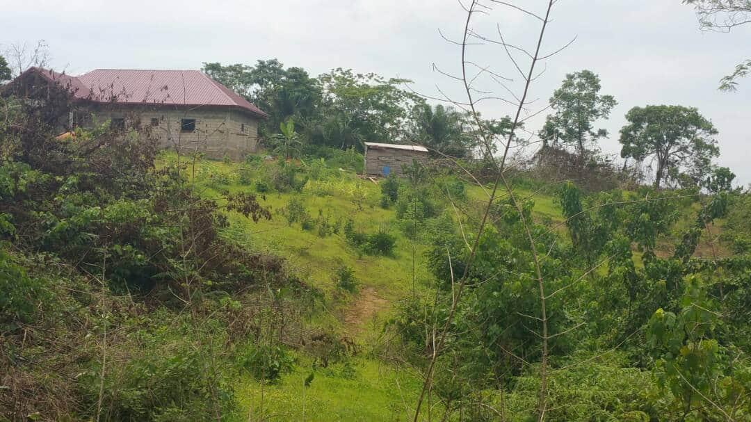 Terrain à vendre - Douala, Bassa, Lendi - 500 m2 - 3 000 000 FCFA