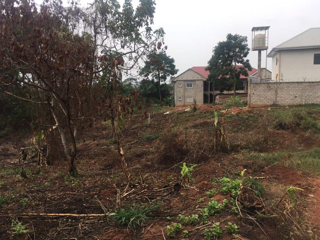 Terrain à vendre - Yaoundé, Nyom, collège adventiste de Nyom 2 - 988 m2 - 17 784 000 FCFA