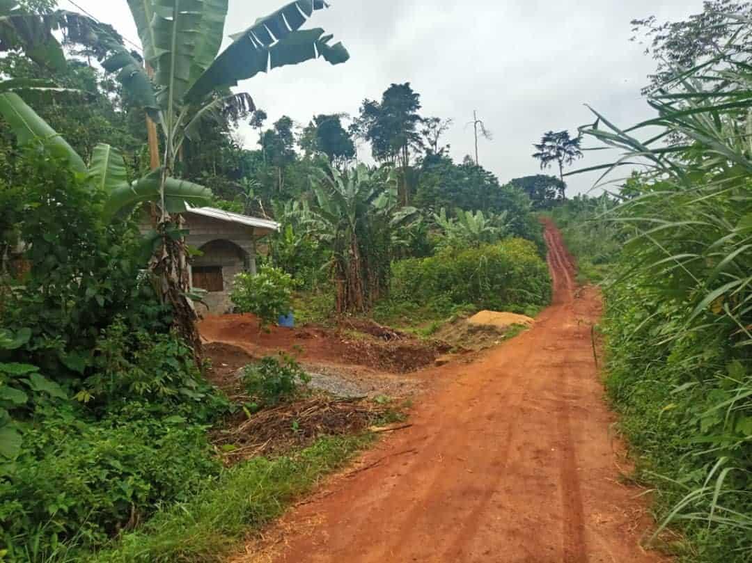 Terrain à vendre - Yaoundé, Nkolbisson, entrée Autoroute Yaoundé Douala - 500 m2 - 4 750 000 FCFA