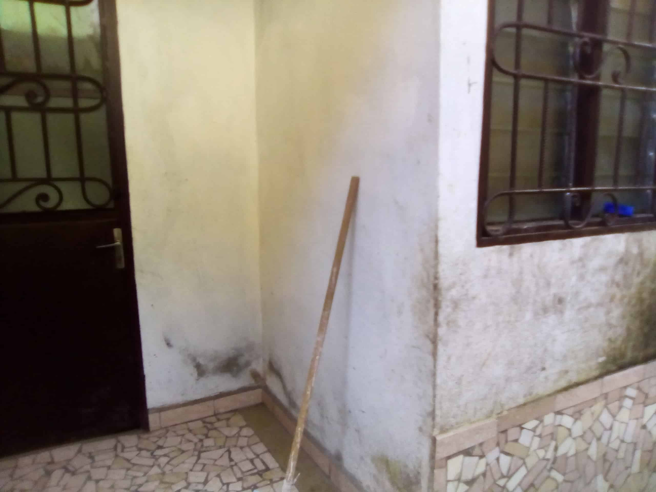 Apartment to rent - Douala, Kotto, fin goudron - 1 living room(s), 1 bedroom(s), 1 bathroom(s) - 40 000 FCFA / month