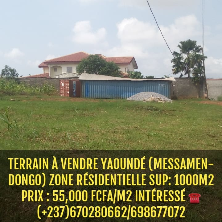 Land for sale at Yaoundé, Odza, Terrain à vendre a Yaoundé ODZA messamendongo derrière le commissariat - 1000 m2 - 55 000 000 FCFA