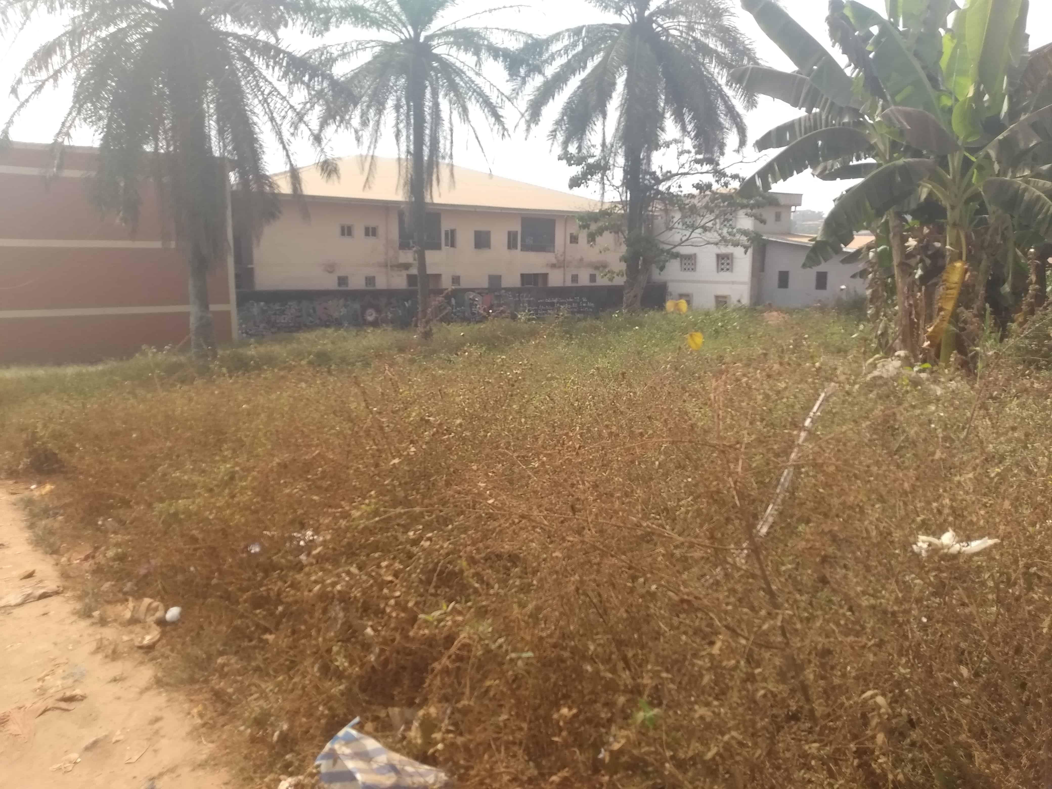 Land for sale at Yaoundé, Nkomo, Carrefour Nkomo - 1000 m2 - 40 000 000 FCFA