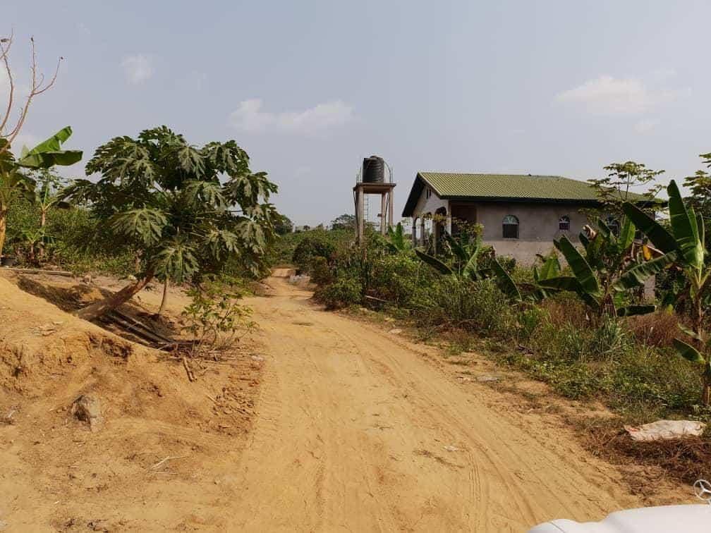 Terrain à vendre - Douala, Lendi, Après la chefferie en allant vers Ngombè - 40000 m2 - 5 000 000 FCFA