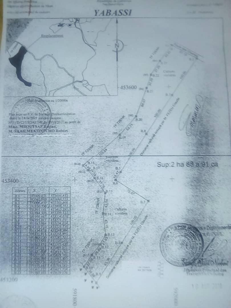 Terrain à vendre - Douala, Akwa I, Xxxx - 3 m2 - 100 000 000 FCFA