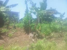 Land for sale at Douala, Beedi, au stade - 150 m2 - 5 000 000 FCFA