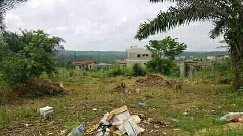 Land for sale at Douala, Bangue, college soflane - 400 m2 - 12 000 000 FCFA