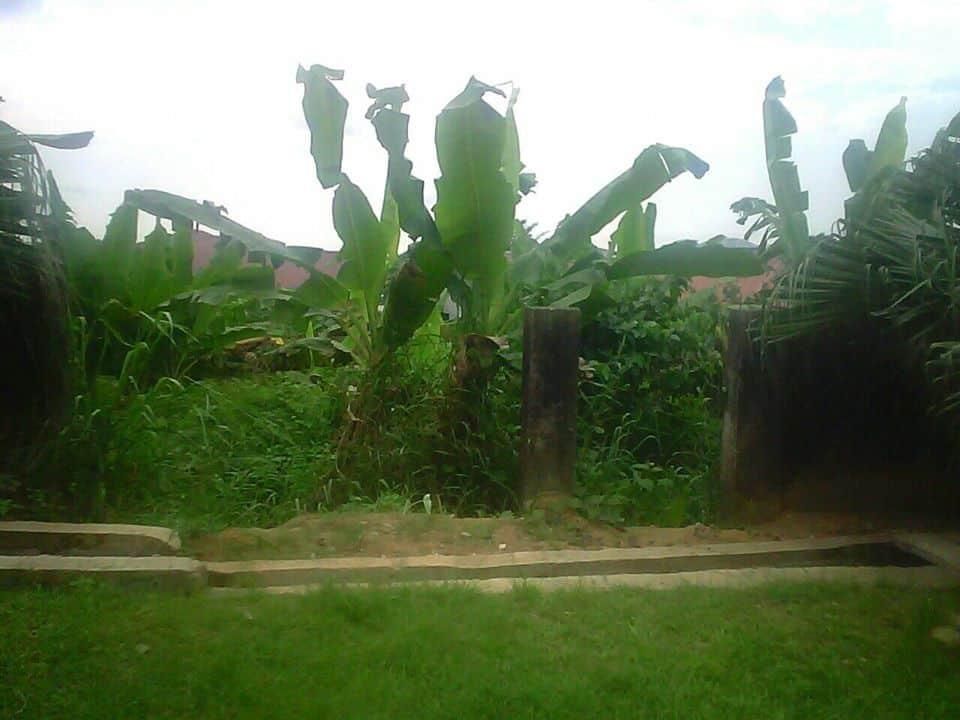 Land for sale at Douala, Logpom, bangos a 50m de la route - 338 m2 - 13 500 000 FCFA