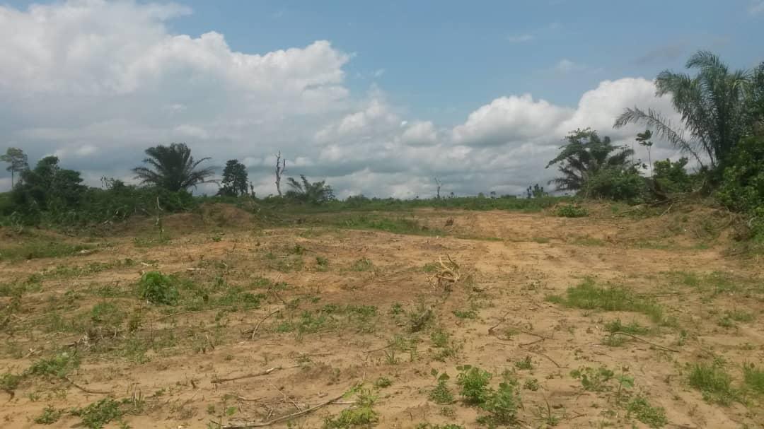 Land for sale at Douala, Lendi, juste après la chefferi bien placé tel +237 694362323 ou +237 676201163  , +237 656379918 - 50000 m2 - 8 500 000 FCFA