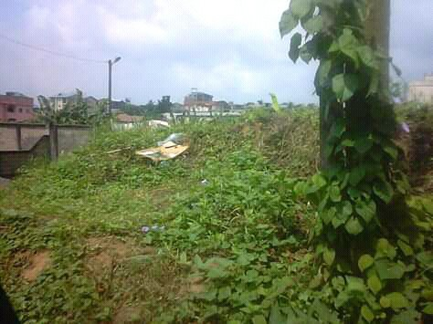 Land for sale at Douala, Bangue, collège - 400 m2 - 12 000 000 FCFA
