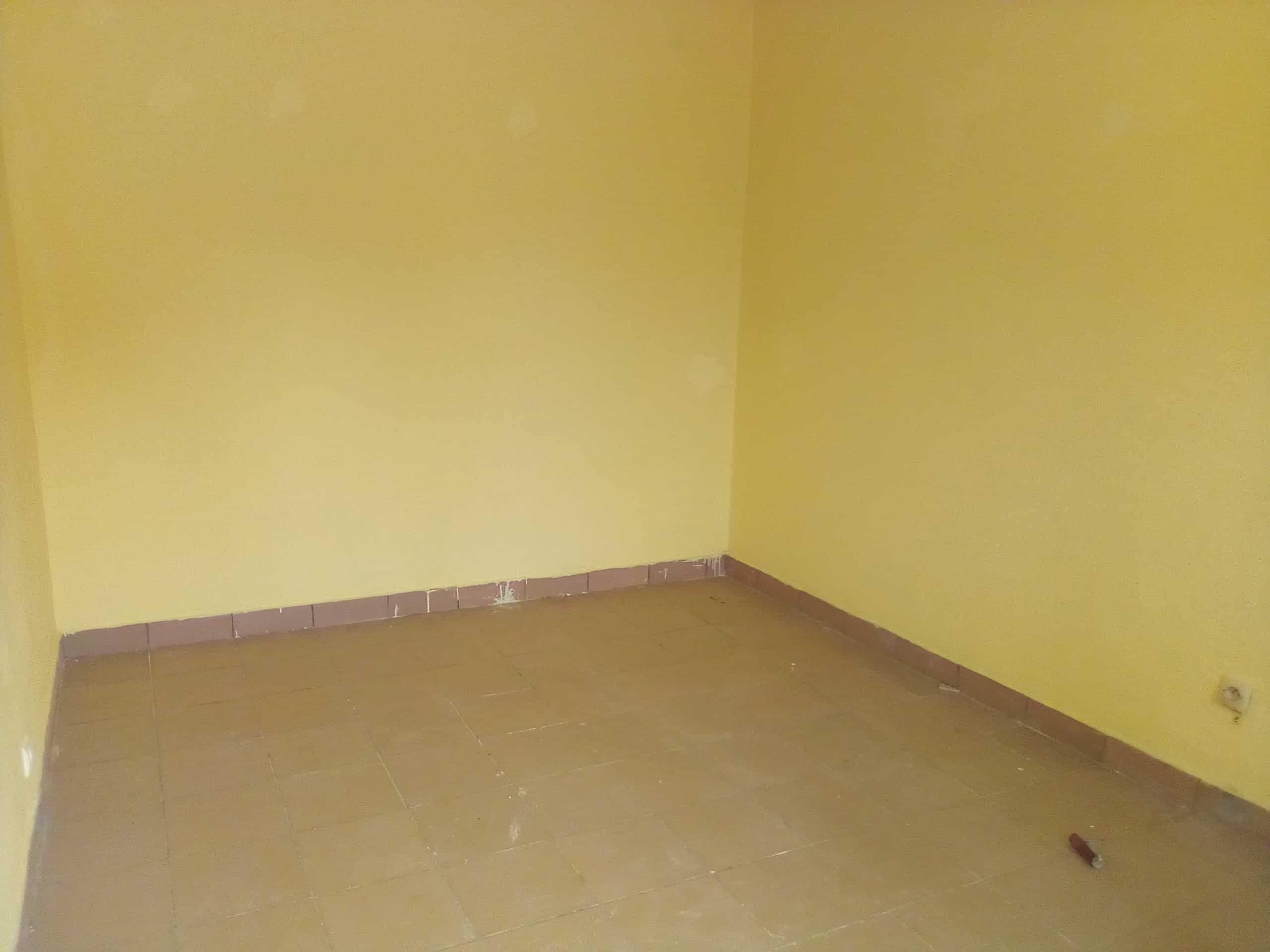 Appartement à louer - Douala, Kotto, fin goudron - 1 salon(s), 1 chambre(s), 1 salle(s) de bains - 45 000 FCFA / mois