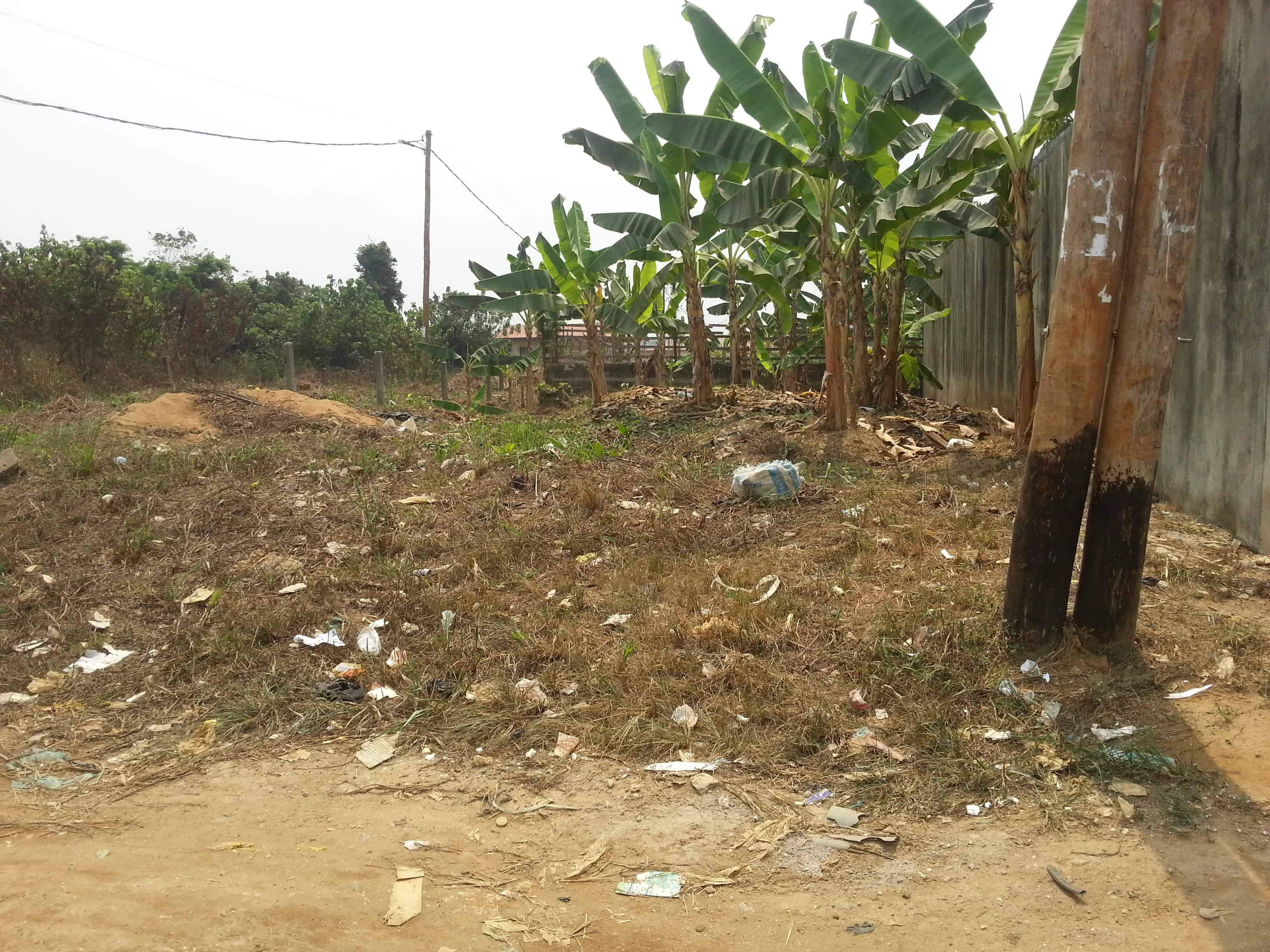 Land for sale at Douala, Yassa, Maetur - 250 m2 - 20 000 000 FCFA