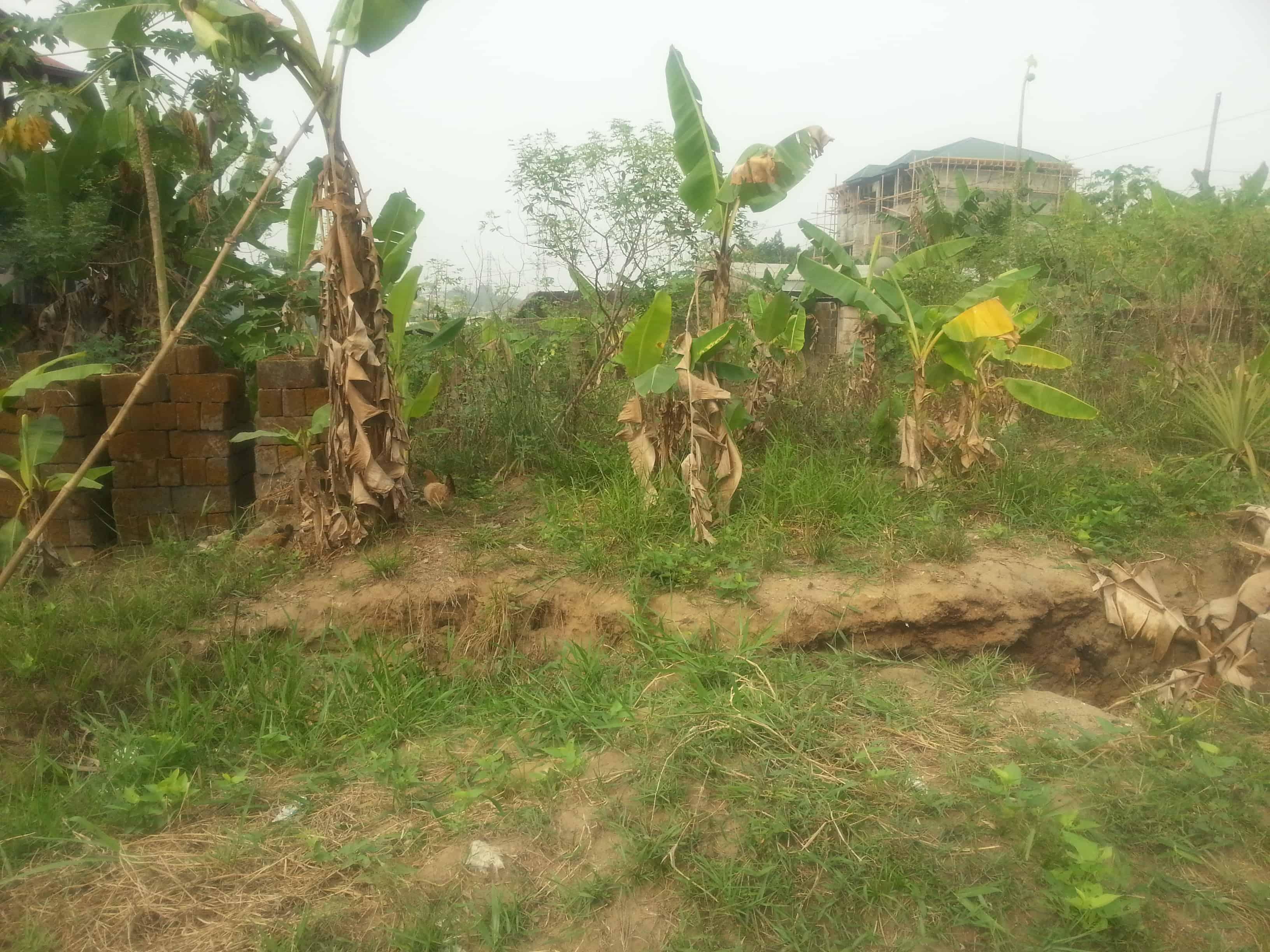 Land for sale at Douala, Yassa, Maetur - 400 m2 - 24 000 000 FCFA